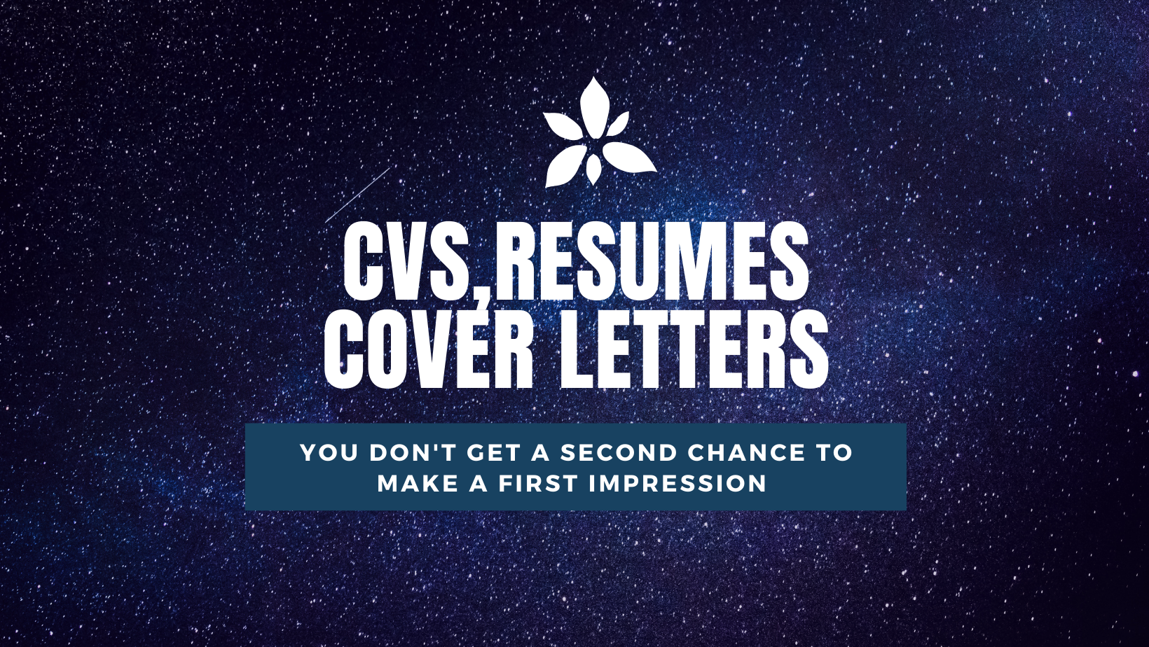 I will deliver a 6 hour professional resume writing service