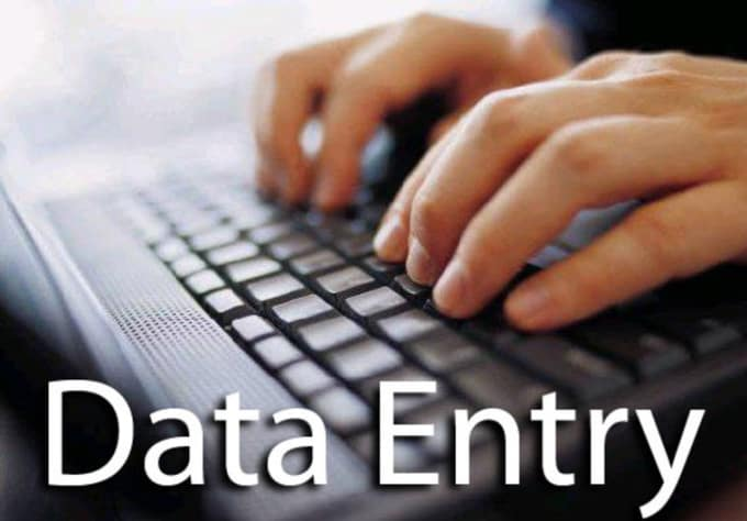 I will Do Excel Data Entry Professionally for you