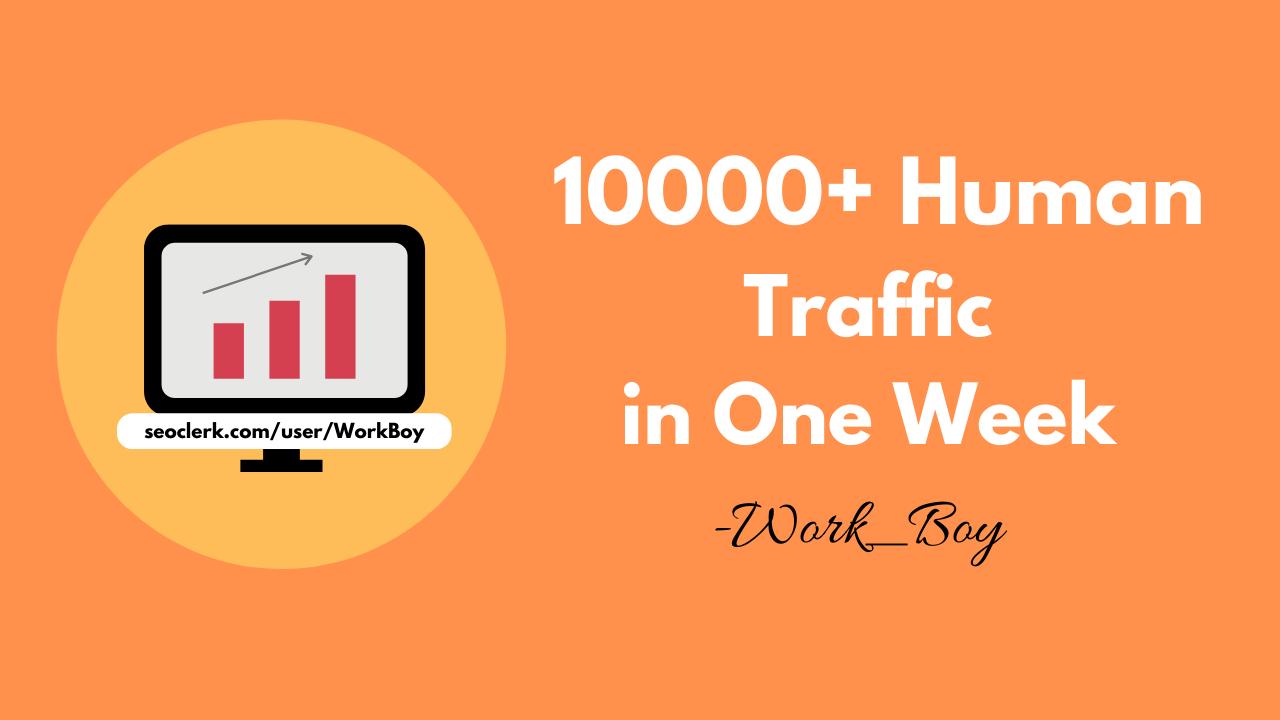 I will provide 10000+ human traffic from google,  yahoo,  etc