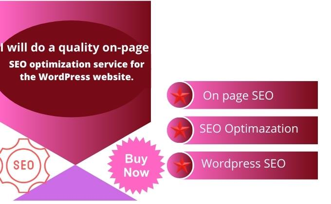 I Will on page SEO optimization service for the word press website