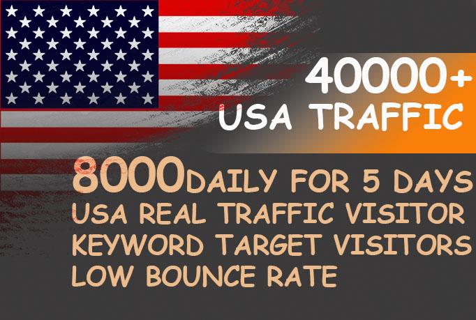 Drive usa keyword target daily website traffic visitors