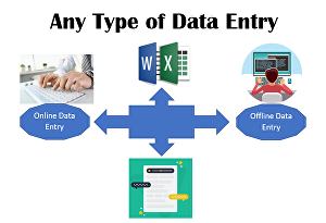 Professional Data manipulation,  entry,  extraction,  setting