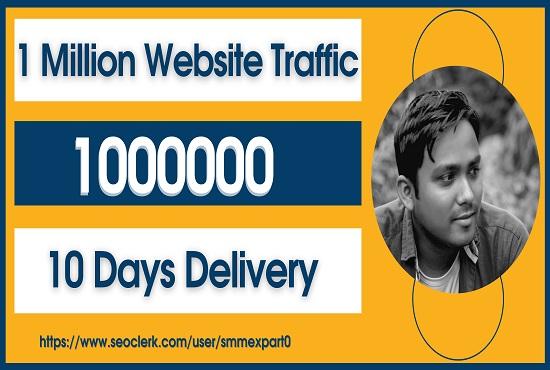 I will drive 1000000 million social media real visitor organic traffic send your website