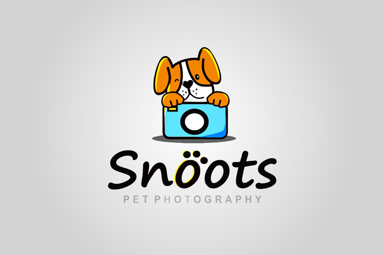 I Will do 5 logo design with mockup within 10 hrs