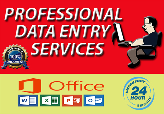 I will do data entry,  data collection,  excel or word