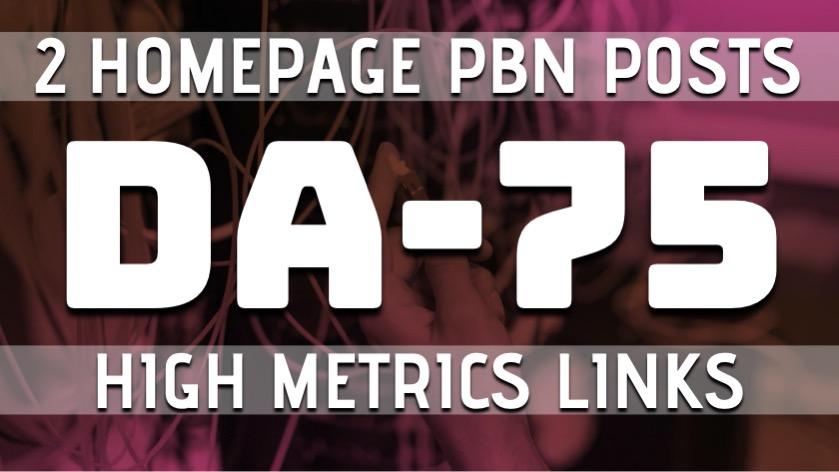 Build 2 Homepage PBN DA75 Permanent links,  High Metrics