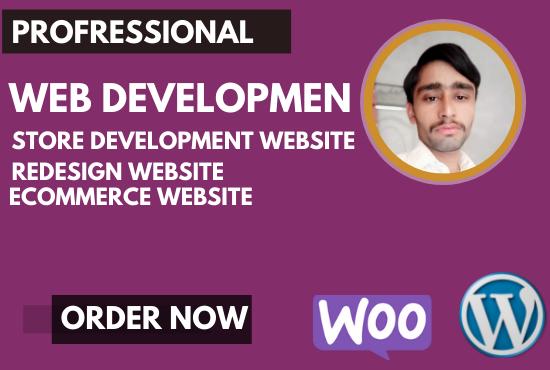 I Will do Website Design Web Developer and Build Responsive Website