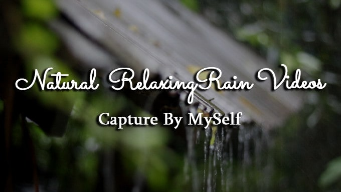 I will create 20 natural rainforest heavy rainfall relaxing videos capture by me