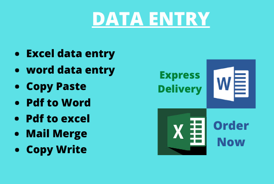 I wil do data entry word and excel, copy and paste, copy write