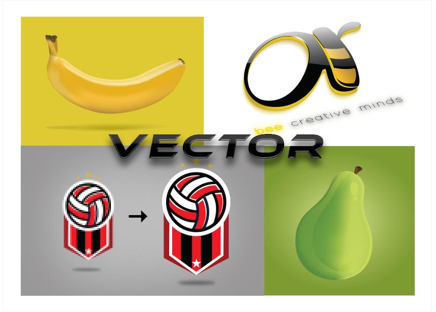 Vector Graphics & Logo Creations