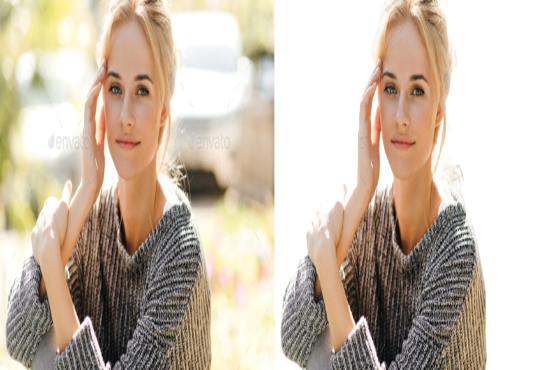 The best,  easiest and fastest background remover in the world