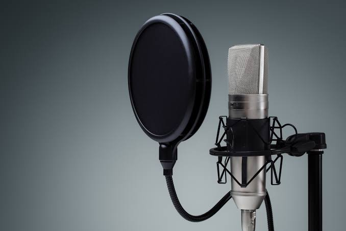 i will make a great voice over for you