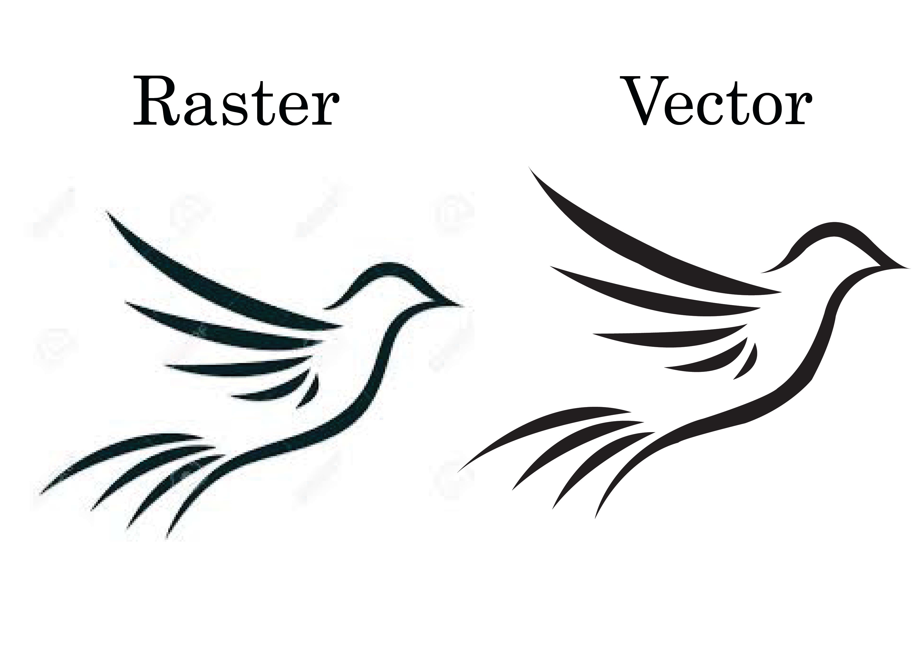 I will do professional vector tracing for raster images and logo