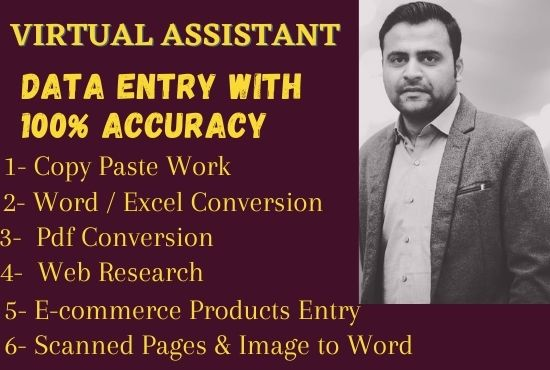 I will be your data entry and virtual assistant