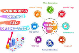 I will do onpage onsite technical seo For your wordpress site