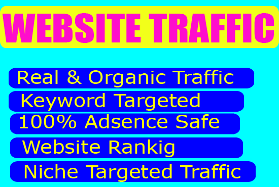 website traffic or visitors to your website