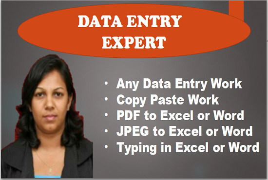 I will do excel data entry,  copy paste,  web research