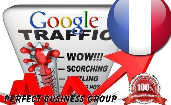 Organic Search Traffic from Google. fr France