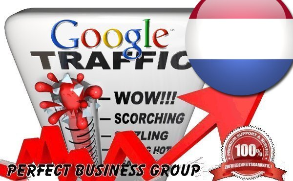 Organic traffic from Google. nl Netherlands with your Keyword