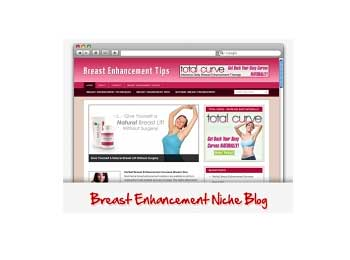 Give You 2 PLR Blogs Breast Enlargement and Colon Cleanse Blog