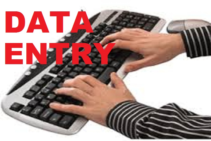 do all kind of Data Entry works,  3 hours