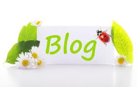 provide BLAST 49 Backlinks 2XPR7 2XPR6 10XPR5 10XPR4 25XPR3, 2 From Blog Comment fo