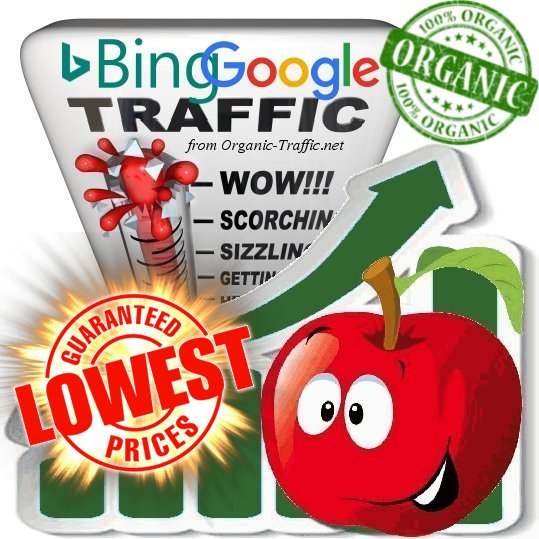 Organic Traffic from Google & Bing White Hat SEO