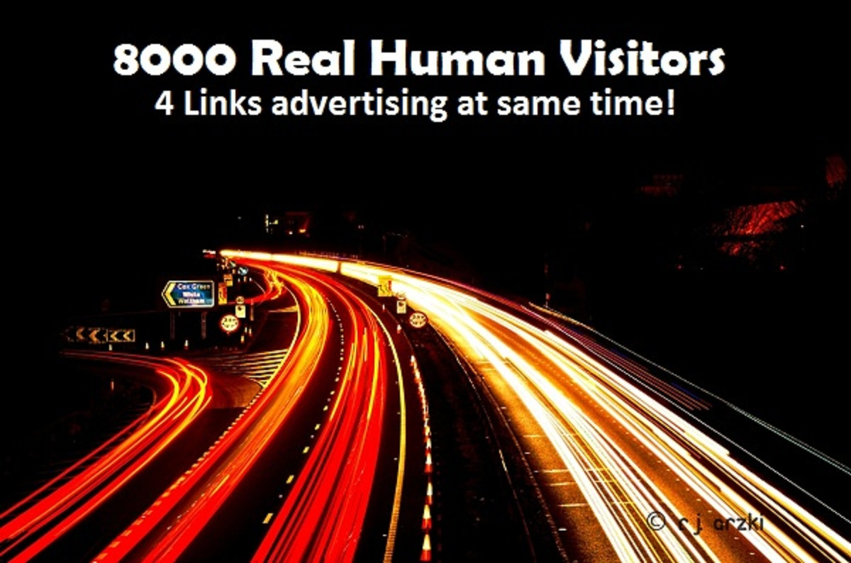 send 8000+ Unique Real Human Visitors to your Link and post proof