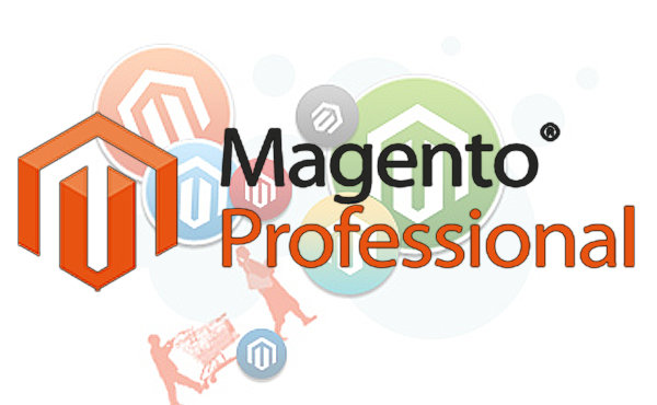 Proffessional Magento installation service