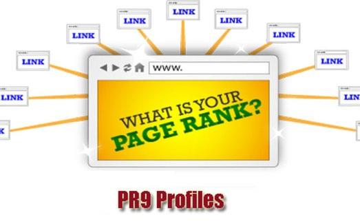 Flickr, Vimeo, Mozilla, Disqus, Opera, Liveinternet 20 PR9 Profiles