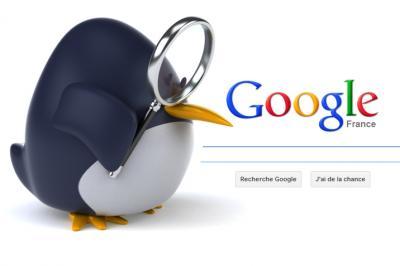 Top Google Ranking Panda & Pinguin update Lifetime