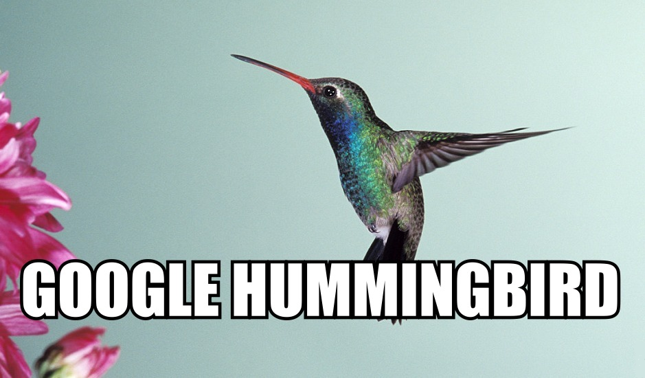 manually Create ULTIMATE Hummingbird PR6-PR6 DoFollow Links