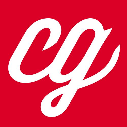 Professional Logo or Corporate Design