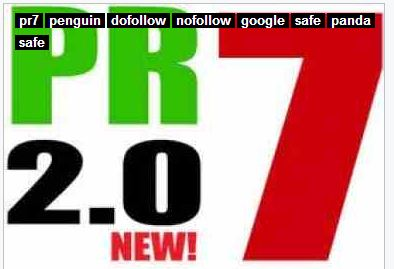 I will Manually Create 12 High Pr Dofollow Backlinks 2Pr7,  10pr6 on actual Page PR for 5