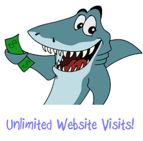 Targeted Unlimited Website Traffic Visits