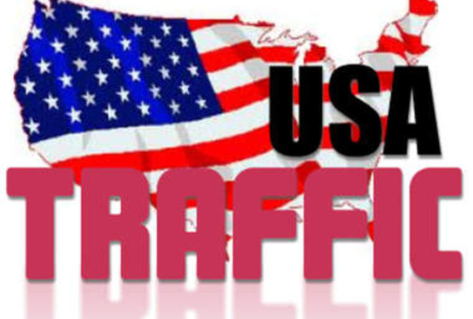 send 7000 Unique USA Traffic human visitors to your w...