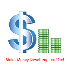 Traffic Reseller Website With Bonus