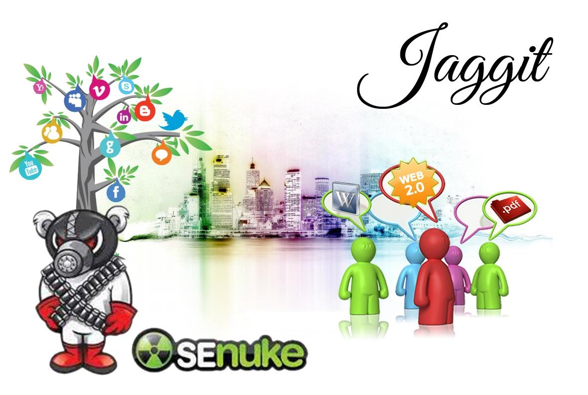 i will run your website to senuke xcr