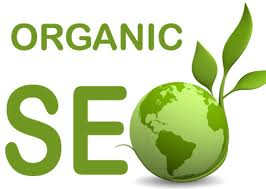I will seo optimize your page for proper search engin...