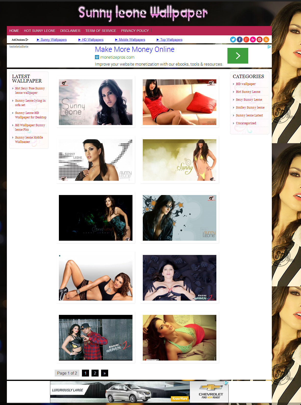 I will build wallpaper website with bulk image posting on wordpress