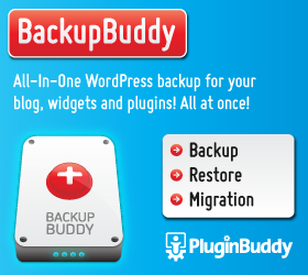 Install Backup Buddy Plugin on Your Blog for $25 - SEOClerks