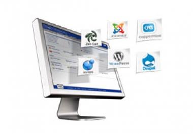 I will create Professional website