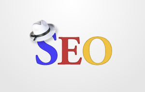 UPDATED Best Google Whitehat SEO Improvement EDU and GOV PR9 Links + 1500 Linkedin connections