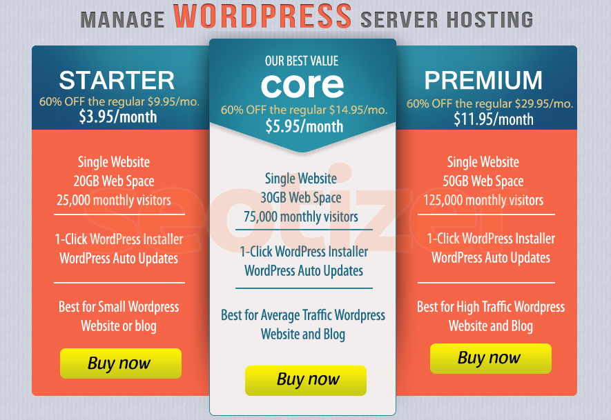 WordPress Server Hosting of 1 Year for Blog or Website