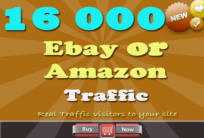 send you 16000 Ebay or Amazon Traffic visitors