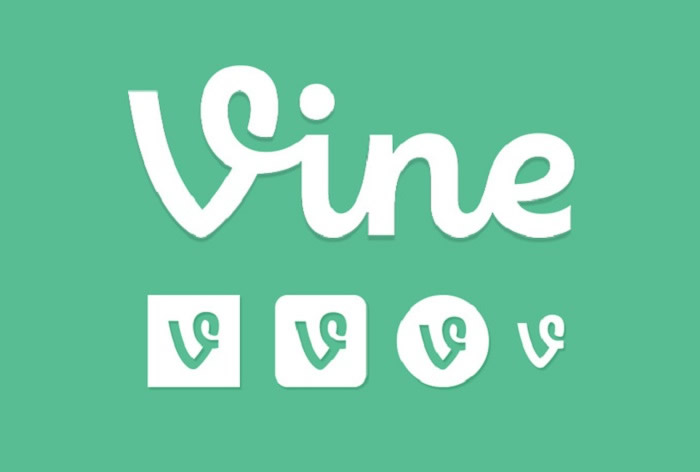 Provide 5000 High Quality Vine Followers OR Likes