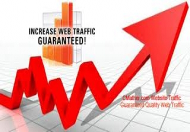 send 300,000 human visitors to your website
