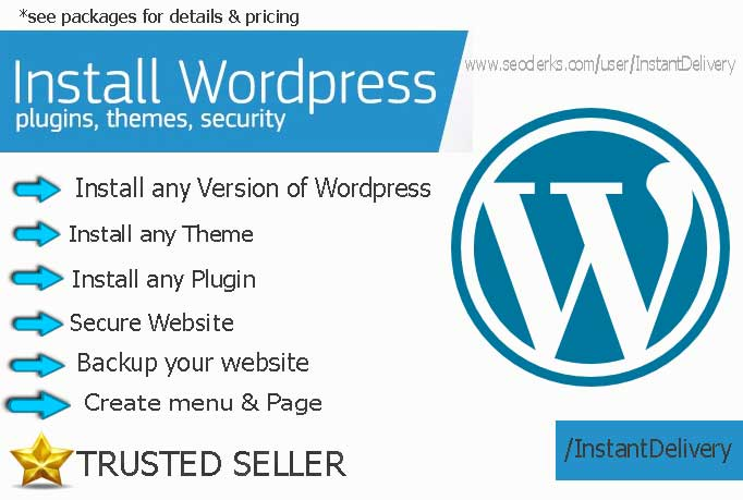 I Will Install Wordpress Theme,  Plugins, And Add Security