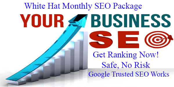 Get 100 White Hat 1 Month SEO Package - Google Safe SEO Link build Service