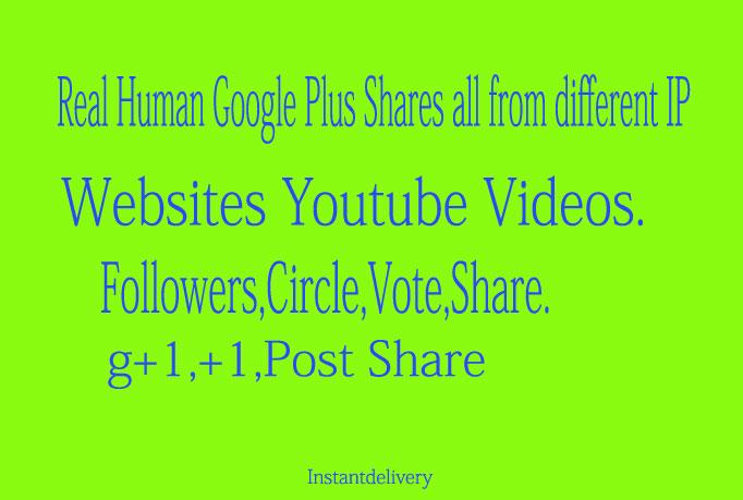 110+ REAL & Permanent USA Google Pls Vote Share f...